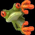 kisspng-frog-royalty-free-drawing-clip-a