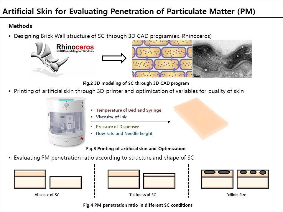 3-D Artificial Skin #2.JPG