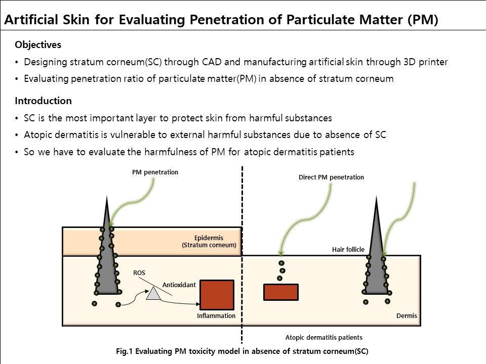 3-D Artificial Skin #1.JPG
