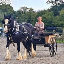 Ladies carriage
