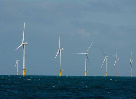 Eco Club Windmills