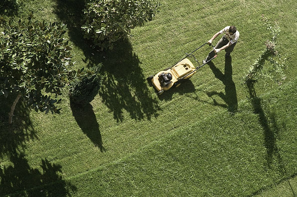 Landscaping with Heart Maintenance