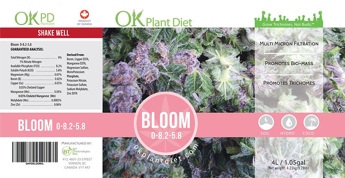BLOOM - 4L.tj2.jpg