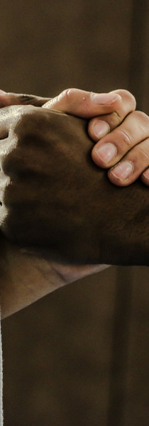 Martial Arts Handshake.jpg
