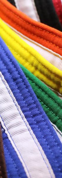 Karate Belts.jpg