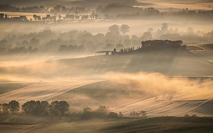 Mist at Dawn in Val D'Orcia by Hazel Price