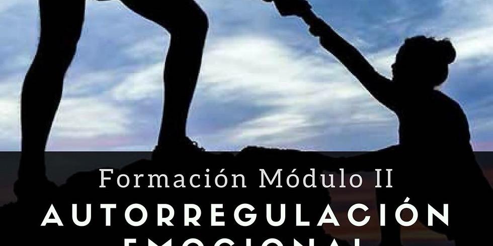 Módulo II - Aprende a Acompañar en la Liberación de Cualquier Dificultad Emocional (1)