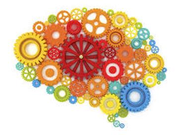 cerebro 1.jpeg