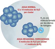 agua hexagona.png