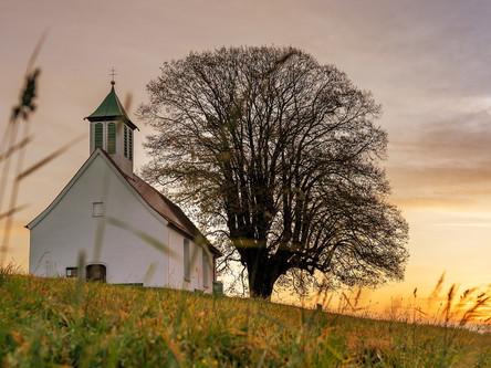 我最喜歡的禱告│牧人青草地