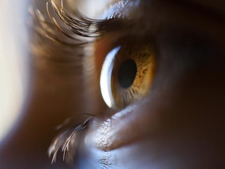 屬靈的眼睛│時代信息