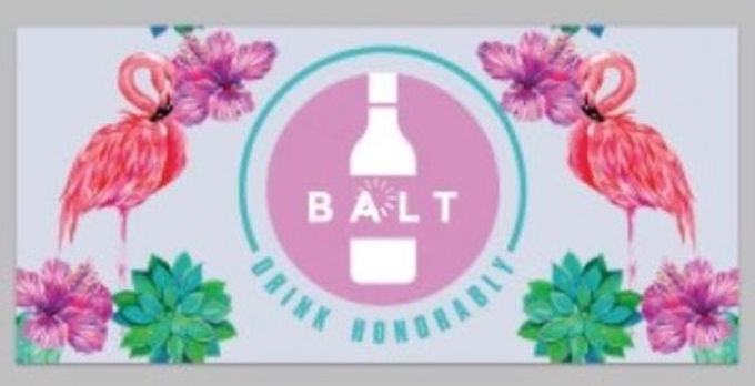 Balt Bath/Beach Towel