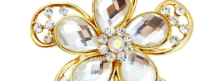 Blossoming Hope Gold Plated Crystal and Cubic Zirconia Brooch for Girls