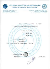 питомник Тотемтой - русский той терьер