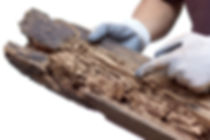 man-pointing-at-termite-damage-to-piece-