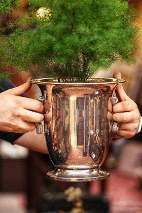 BOTTLE COOLER : A silver metal wine / champagne bucket