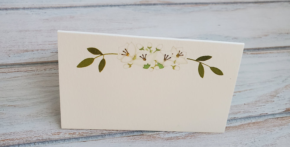 Karen Adams - Emma Floral Place cards