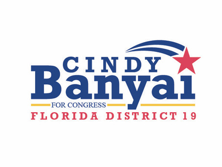 Cindy Banyai- Running for Congress