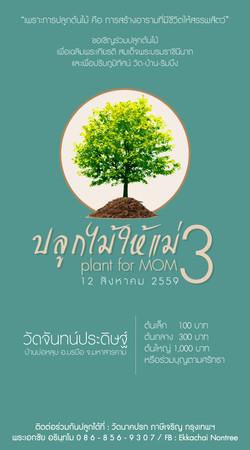 ปลูกต้นไม้ ปี 3_59