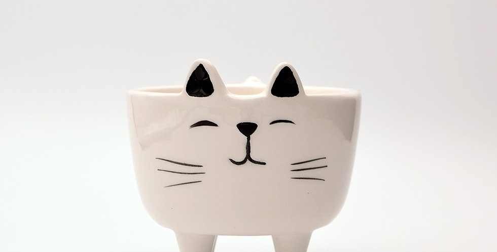 Cute Kitty Planter