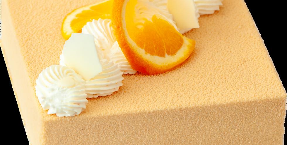 ORANGE HAZELNUT MOUSSE CAKE