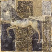 Equine Texture & Anatomy
