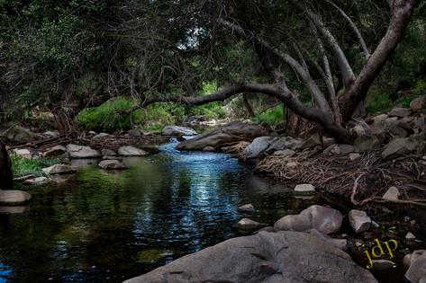 Quiet Brook