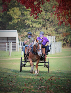 CARRIAGE DRIVE EVENT