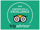 tripadvisor_excellence.png