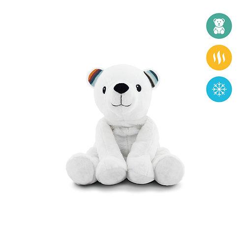 Sooja- ja külmaloom karu Paul