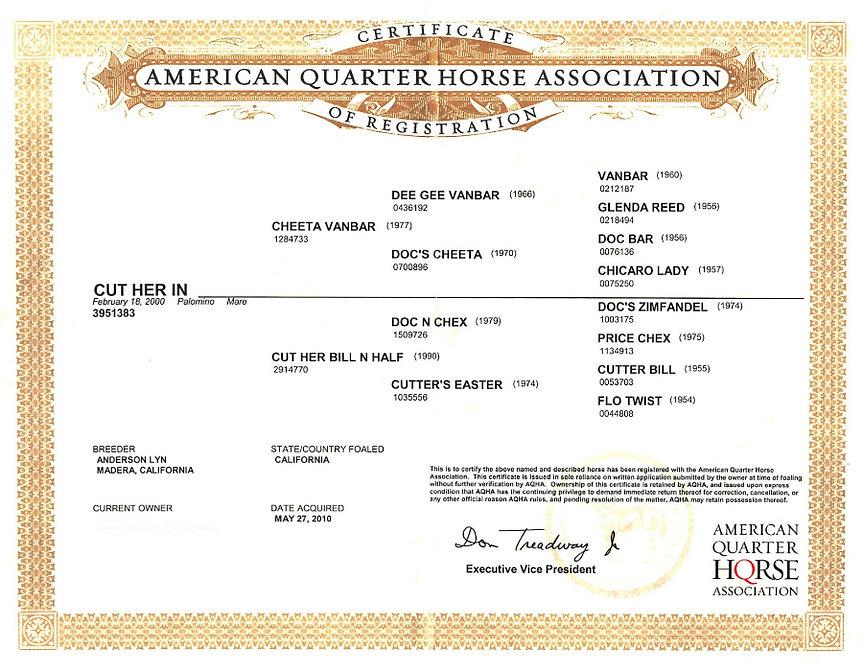 Holly's AQHA Registration (1).jpg