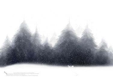 F003_고요한 숲2.jpg