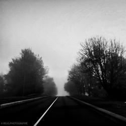sombre mélancolie