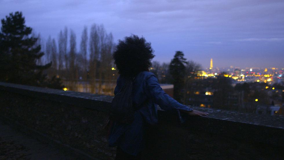 Iris Eiffel Tower Night.jpg