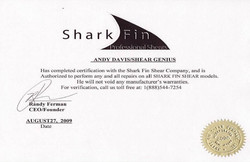 Shark Fin 2009