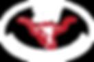 2W Footer Logo