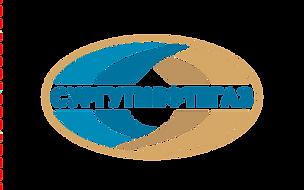 СУРГУТНЕФТЕГАЗ лого | Поставщик газа