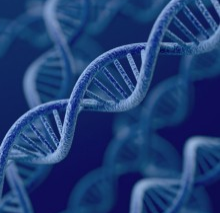To Catch a Criminal: Is Expanding the DNA Database a Crime Deterrent or a Privacy Invasion?
