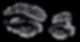 eyelashes-clipart-eyebrow-4.png