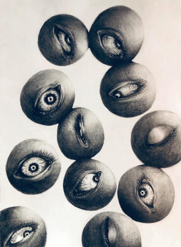 卵細胞(ova)