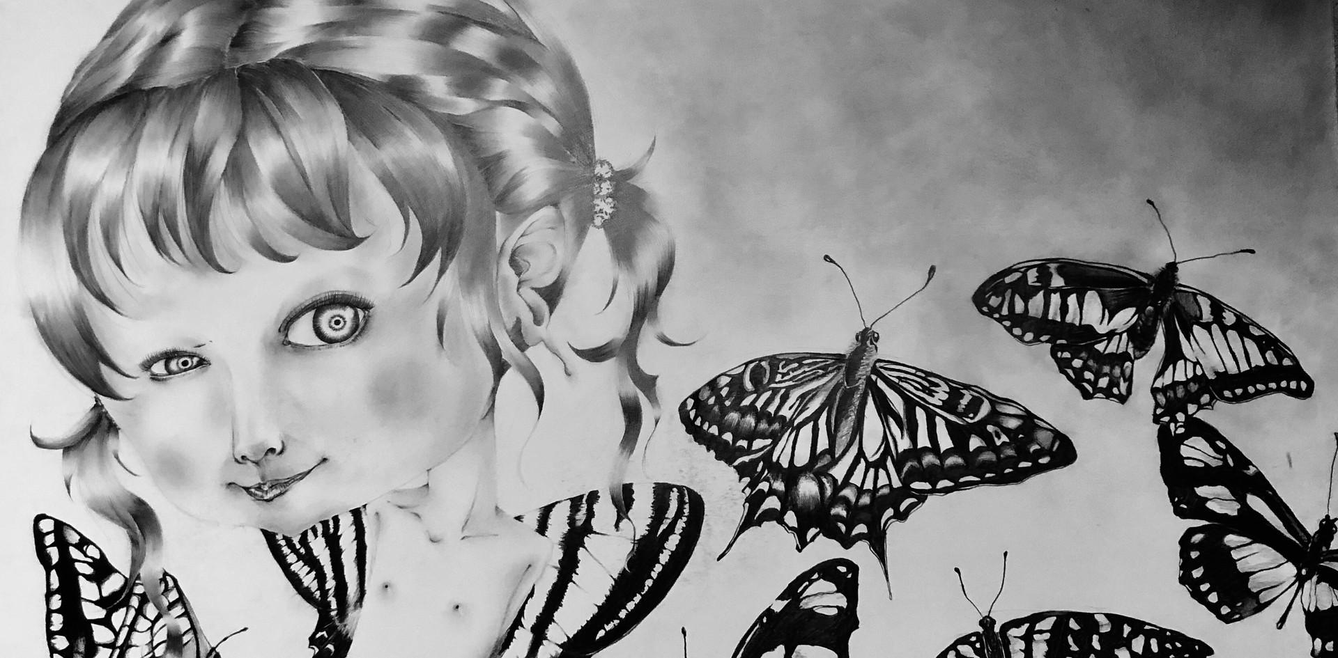 「花蝶風月」(蝶)
