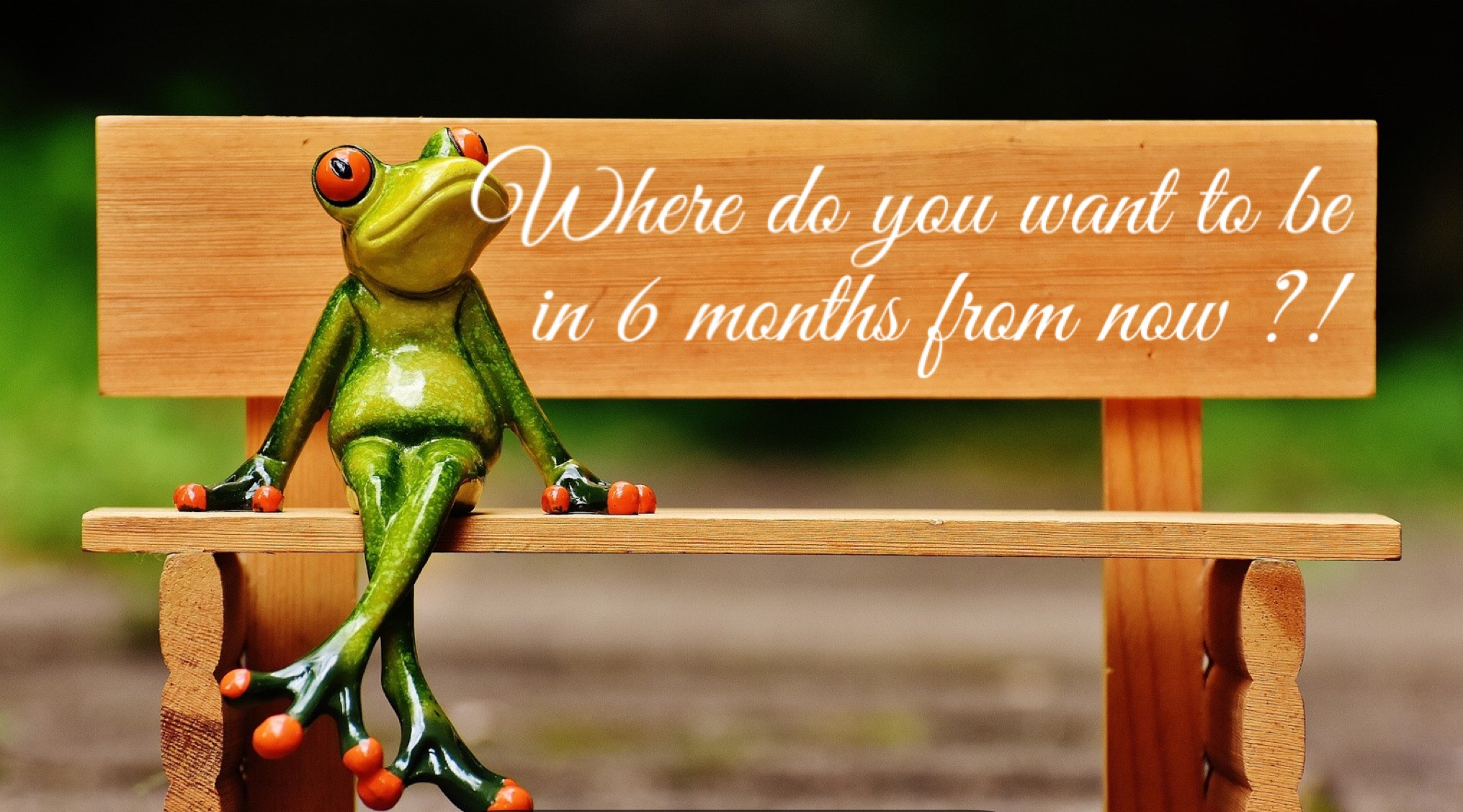 6 months health coaching sessions