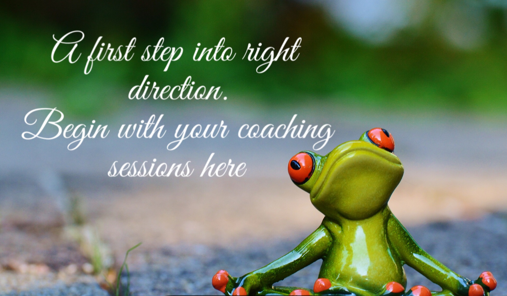 Individual health coaching sessions