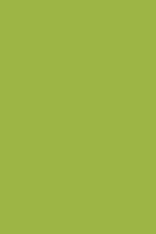 Bastelfilz lindgrün