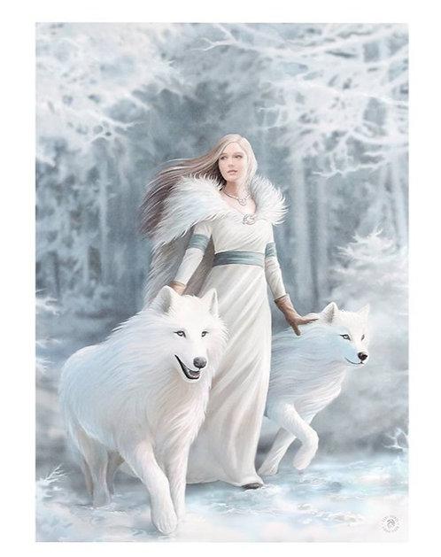 Wölfe im Schnee
