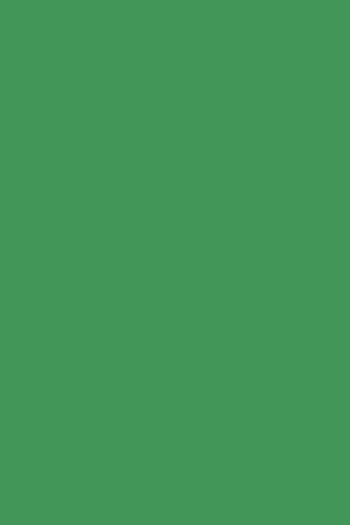 Bastelfilz grün