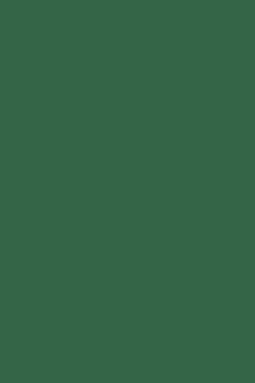 Bastelfilz dunkelgrün