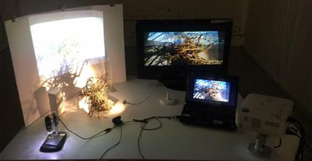 atelier digitale.png