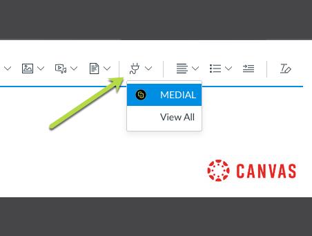 MEDIAL – Canvas Teacher Video Assignment