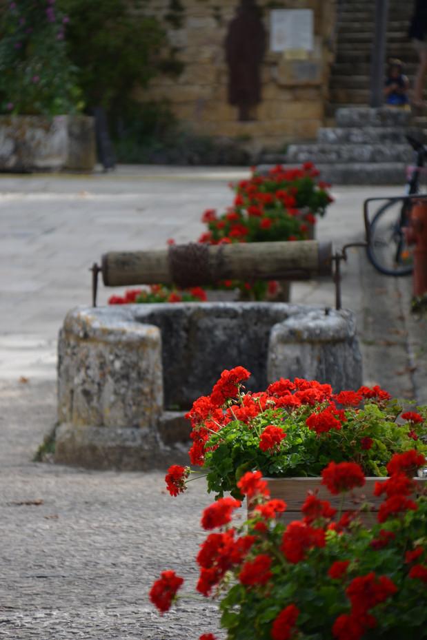 Le puits et ses géraniums